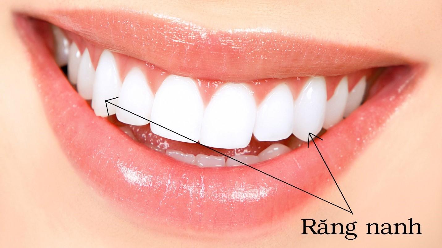 Người Trưởng Thành Có Bao Nhiêu Răng? - Nha Khoa Quốc Tế Á Châu - ảnh 6